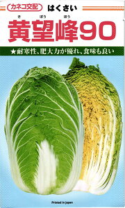 秋まきハクサイ 種 『黄望峰90』 カネコ種苗/小袋(0.9ml)