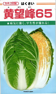 秋まきハクサイ 種 『黄望峰65』 20ml カネコ種苗