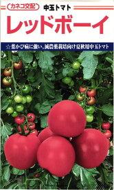 中玉トマト 種 『レッドボーイ』 100粒 カネコ種苗