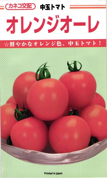 中玉トマト 種 『オレンジオーレ』 100粒 カネコ種苗