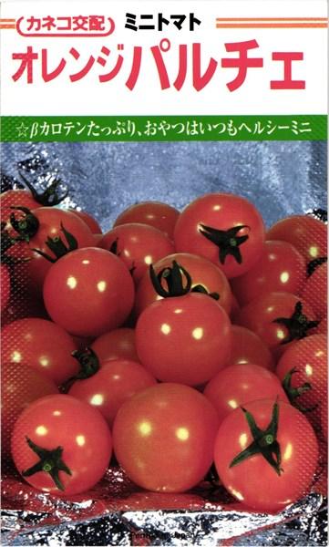ミニトマト 種 『オレンジパルチェ』 小袋(19粒) カネコ種苗