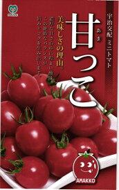 ミニトマト 種 『甘っこ』 小袋 丸種