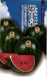 小玉スイカ 種 『姫甘泉 (ひめかんせん)』 200粒 丸種