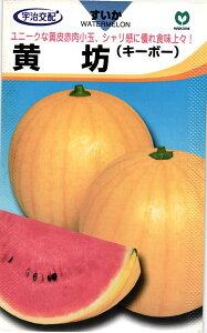 小玉スイカ 種 『黄坊』 小袋 丸種