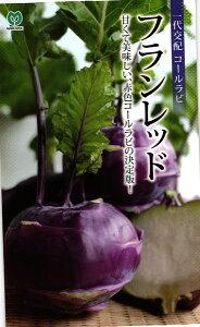 紫コールラビ 種 『フランレッド』 小袋 丸種