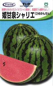 小玉スイカ 種 『姫甘泉シャリエ』 小袋 丸種