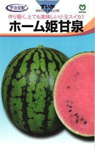 小玉スイカ 種 『ホーム姫甘泉』 小袋 丸種