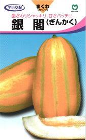 マクワウリ 種 『銀閣甜瓜』 小袋 丸種