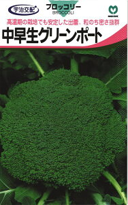 ブロッコリー 種 『中早生グリーンポート』 小袋 丸種