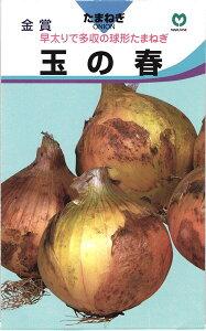 極早生タマネギ 種 『玉の春』 2dl 丸種