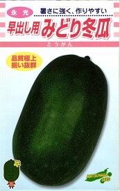 トウガン 種 『早出しみどり冬瓜』 小袋 松永種苗