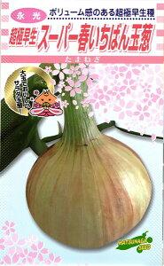 超極早生タマネギ 種 『スーパー春いちばん』 2Lコート1万粒 松永種苗