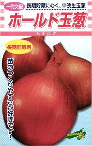 中晩生タマネギ 種 『ホールド』 小袋(4ml) 松永種苗