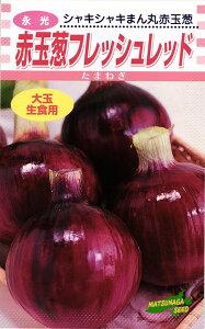 赤タマネギ 種 『フレッシュレッド』 2dl 松永種苗