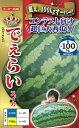 超大玉スイカ 種 『でぇらい』 小袋(10粒) ナント種苗