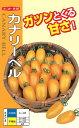 プラム型ミニトマト 種 『カナリーベル』 小袋(20粒) ナント種苗