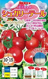 ミニトマト 種 『シュガリーテール』 15粒 ナント種苗