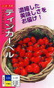 プラム型ミニトマト 種 『ティンカーベル』 小袋(20粒) ナント種苗