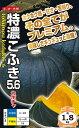 黒皮栗カボチャ 種 『特濃こふき5.6』 小袋(8粒) ナント種苗