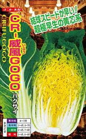 ハクサイ 種 『CR威風GOGO』 ナント種苗/小袋(0.7ml)