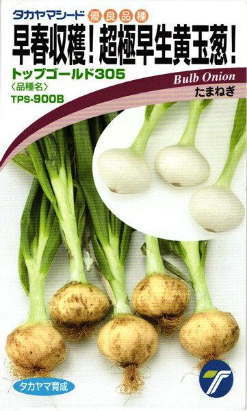 タマネギ 種 『トップゴールド305』 小袋(3.5ml)タカヤマシード