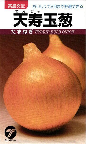 タマネギ 種 『天寿玉葱』 小袋(4.5ml)タカヤマシード