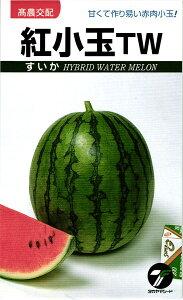 小玉スイカ 種 『紅小玉TW』 小袋(1.3ml) タカヤマシード