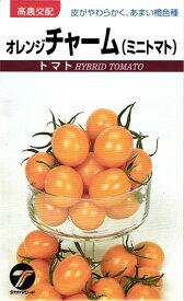 ミニトマト 種 『オレンジチャーム』 小袋(0.1ml) タカヤマシード