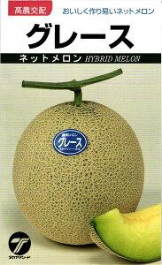 メロン 種 『グレース』 小袋(10粒) タカヤマシード