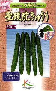 京野菜 種 『聖護院きゅうり』 小袋(2ml) タカヤマシード