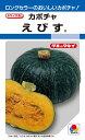 カボチャ 種 『えびす』 100粒 タキイ種苗