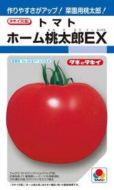 トマト 種 『ホーム桃太郎EX』 33粒(DF) タキイ種苗