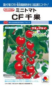 ミニトマト 種 『CF千果』 18粒(DF) タキイ種苗