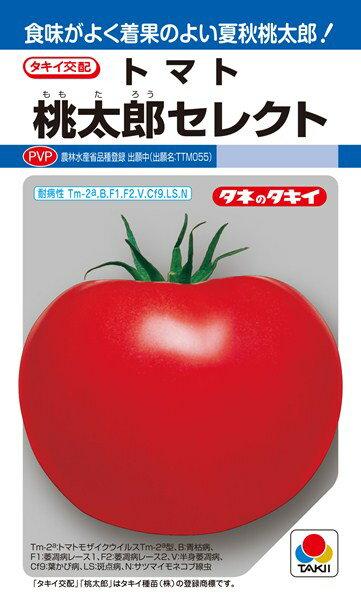 トマト 種 『桃太郎セレクト』 ペレット2L1000粒 タキイ種苗