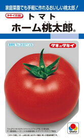 トマト 種 『ホーム桃太郎』 1000粒 タキイ種苗