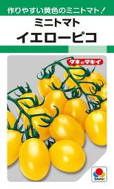 ミニトマト 種 『イエローピコ』 30粒(GF) タキイ種苗