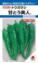 トウガラシ 種 『甘とう美人』 20粒(RF) タキイ種苗