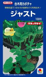 キュウリ、メロン用台木 種 『ジャスト』 100粒 タキイ種苗