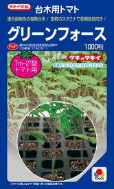トマト台木 種 『グリーンフォース』 1000粒 タキイ種苗