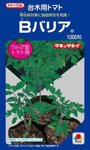 トマト台木 種 『Bバリア』 ペレット2L1000粒 タキイ種苗