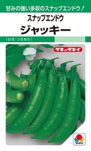 スナップエンドウ 種 『ジャッキー』 1L タキイ種苗