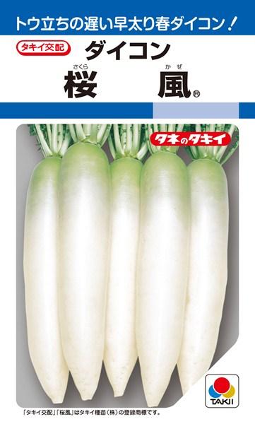 春〜夏どりダイコン 種 『桜風』 10ml タキイ種苗