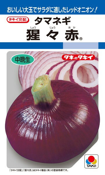 タマネギ 種 『猩々赤』 3ml(RF) タキイ種苗