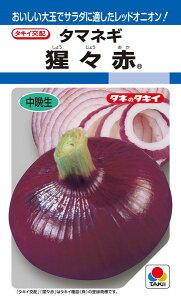 タマネギ 種 『猩々赤』 20ml タキイ種苗