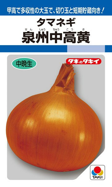タマネギ 種 『泉州中高黄』 1dl タキイ種苗