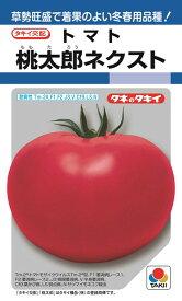 トマト 種 『桃太郎ネクスト』 ペレット2L1000粒 タキイ種苗