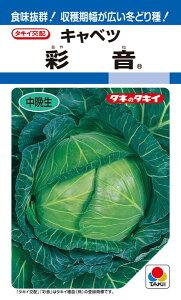 年内〜冬どりキャベツ 種 『彩音』 ペレット小袋150粒 タキイ種苗