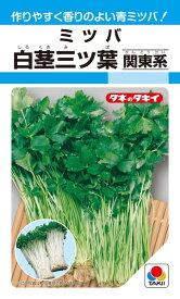 ミツバ 種 『白茎三ツ葉(関東系)』 15ml(MF) タキイ種苗