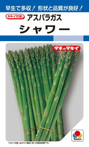 アスパラガス 種 『シャワー』 1.4ml(DF) タキイ種苗