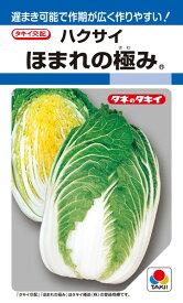 黄芯ハクサイ 種 『ほまれの極み』 AHA01A タキイ種苗/ペレットL5000粒